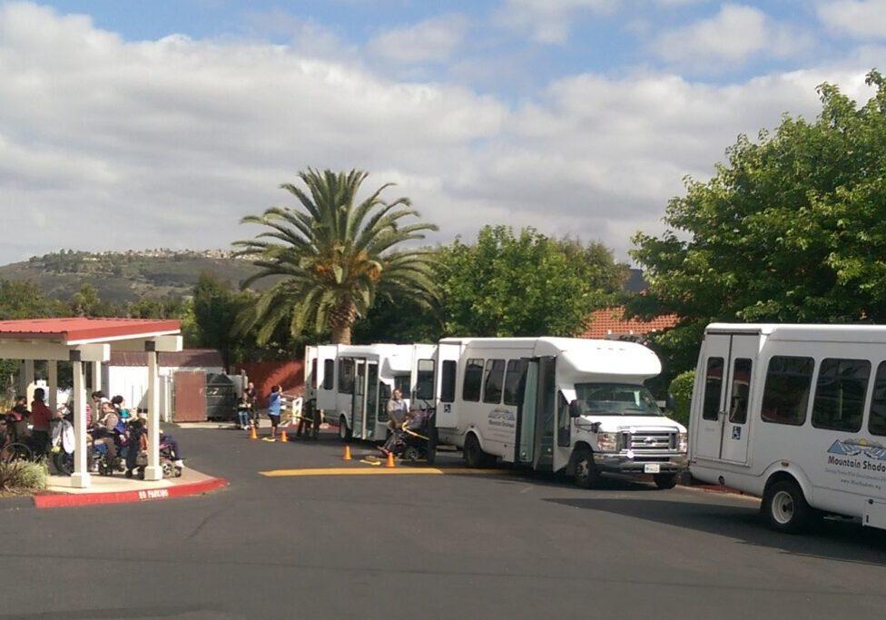 buses (1)